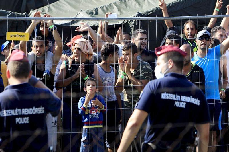 """Transporte fatal en el campo: ¿Migrantes """"desechables""""?"""