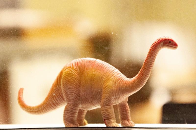 Opinión: Cómo no ser un dinosaurio