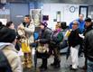 Programa de credencialización beneficiará a indocumentados en NY