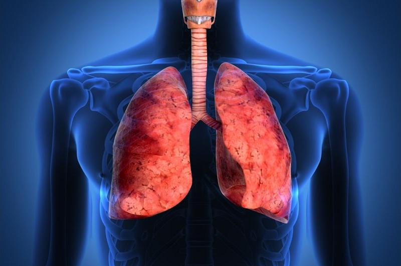 Tuberculosis pulmonar es un padecimiento prevenible: Seguro Social
