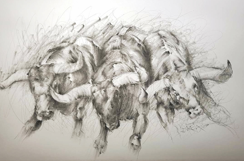 Los toros bravos del pintor Juan D' Varela