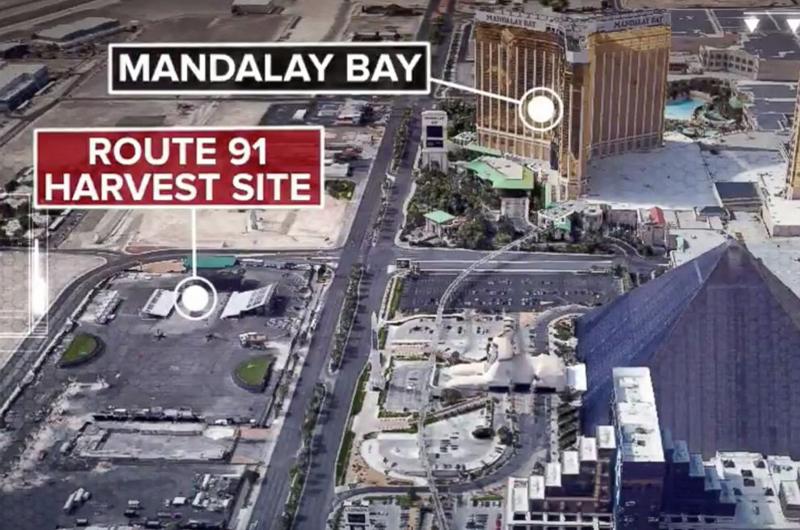 Hombre acribilla a decenas en concierto en Las Vegas